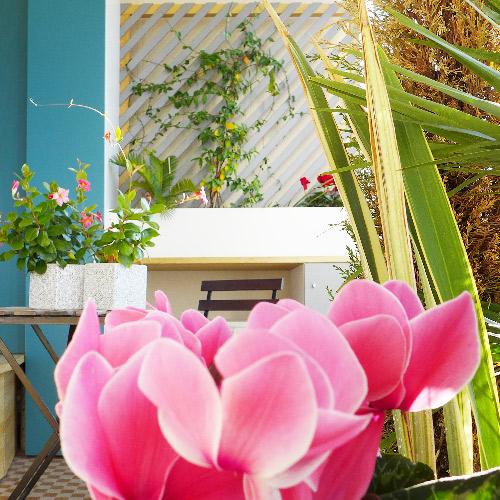 Une banquette en bois prend place devant les fenêtres, sur le balcon. Devant, une table, des plantes, une chaise. Au fond, un meuble sur mesure comprend des rangements cachés et une balconnière haute avec sa treillis.
